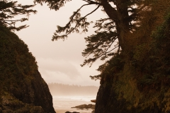 Landscape 17-77