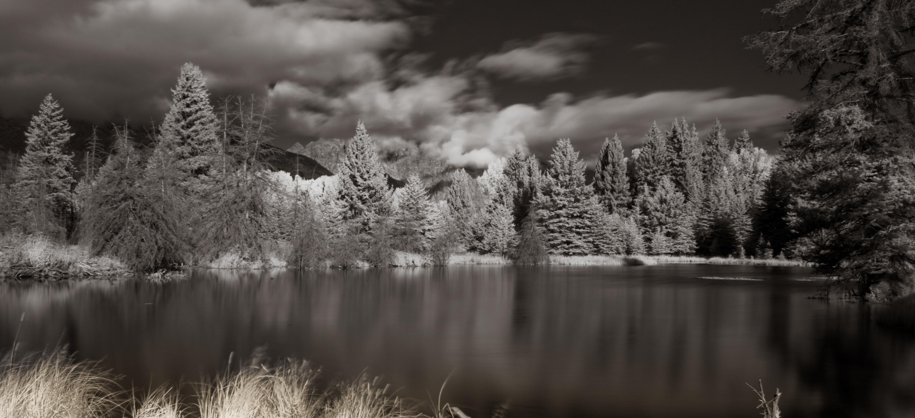 Landscape 17-4