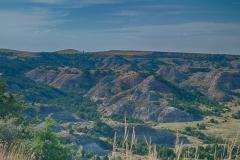 Landscape 17-111